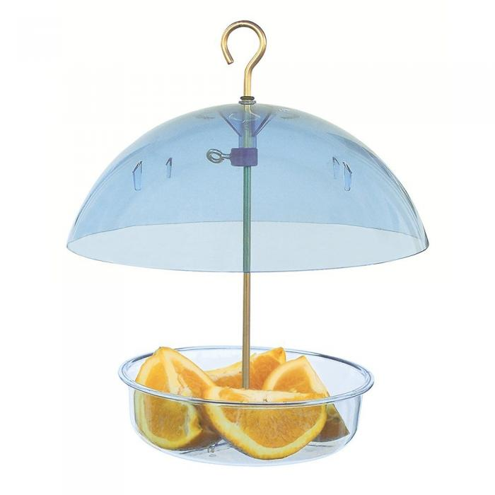 Droll Yankees Multi Purpose Covered Dish Seed Saver Bird Feeder - Blue