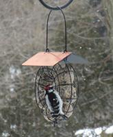 Songbird Essentials Suet Ball Copper Roof Round Wire Circle Bird Feeder