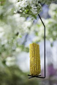Panacea Corn Cob Seed Cylinder Feeder Black