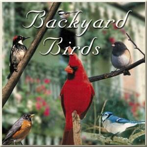 Naturescapes Backyard Birds CD