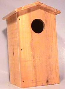 Decorative Bird Houses by Songbird Cedar