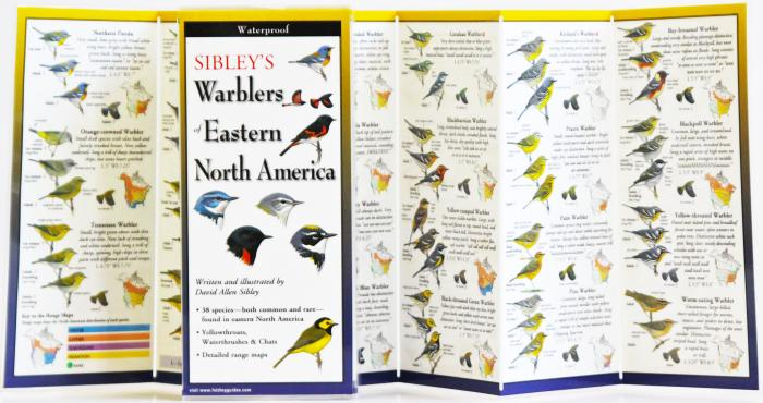Steven M. Lewers & Associates Sibley's Warblers of Eastern N