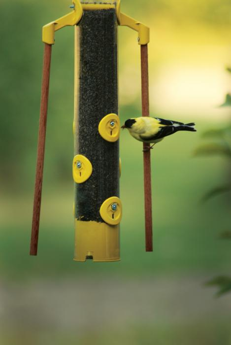 "Pinebush 18"" Finch Tube Bird Feeder with Dowels (Yellow)"