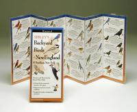 Steven M. Lewers & Associates Sibley's Backyard Birds of The Northeast