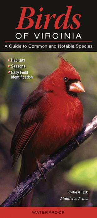 Quick Reference Publishing Birds of Virginia