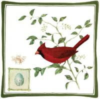 Alice's Cottage Cardinal Spiced Hot Pad