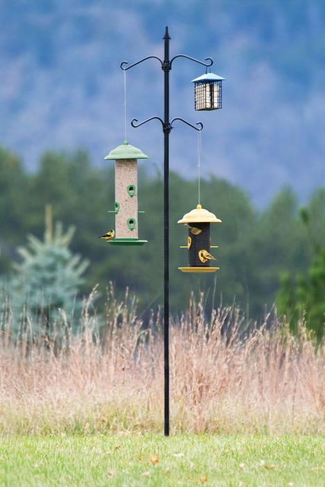 Hiatt Manufacturing Bird Feeder Station 4 Hook Design