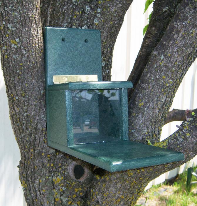 Songbird Essentials Recycled Plastic Squirrels Only Bird Feeder
