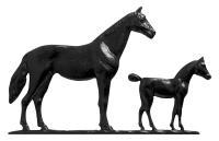 """30"""" Mare & Colt Weathervane - Garden Black"""