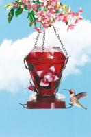 Perky Pet Blossom Hummingbird Bird Feeder