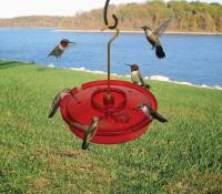 Songbird Essentials Hummingbird Haven