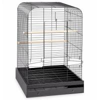 Madison Bird Cage - Black