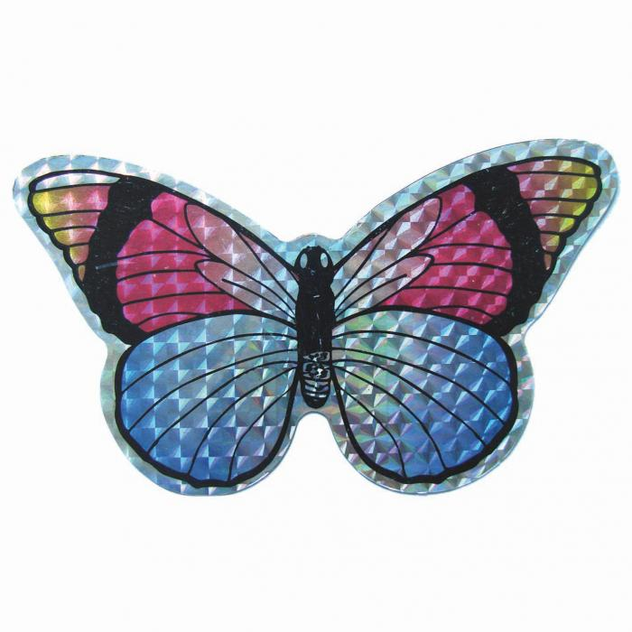 The Clark Collection Small Multi Colored Butterfly