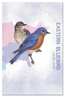 Tree Free Greetings Eastern Bluebird Eco Notes