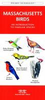 Waterford Massachusetts Birds