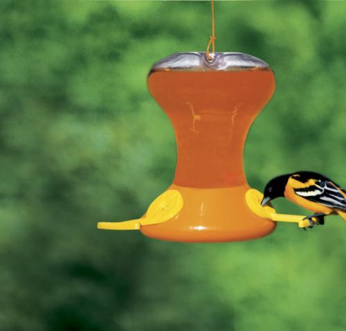 Songbird Essentials Fliteline Junior 30 Ounce Oriole Bird