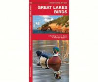 Waterford Great Lakes Birds