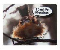 Songbird Essentials 2-D Magnet I Don't Do Mornings!