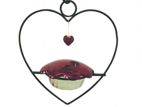Bird's Choice Heart Hummingbird Bird Feeder