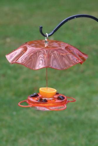 Bird's Choice Oriole Feeder with Weather Guard Kit