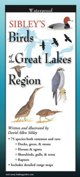 Steven M. Lewers & Associates Sibley's Birds Great Lakes Region