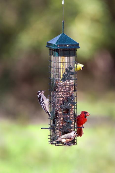 Brome Bird Care Seed Saver 200 Bird Feeder