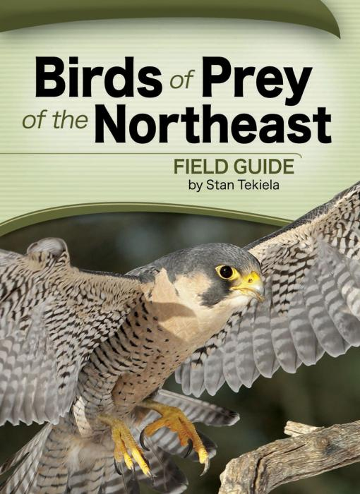 Adventure Publications Birds of Prey of the Northeast