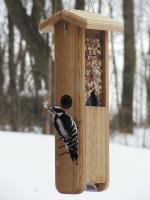 Birds Choice Woodpecker Feeder with Hanging Cable