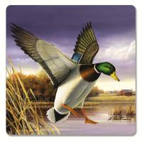 Counter Art Water Birds Hardboard Coasters