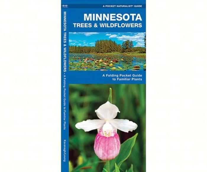 Waterford Minnesota Trees & Wildflowers