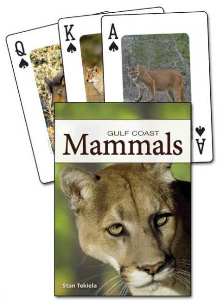 Adventure Publications Mammals of the Gulf Coast Playing Cards