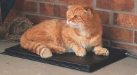 K and H Outdoor Heated Kitty Pad