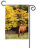 Magnet Works Out to Pasture Garden Flag