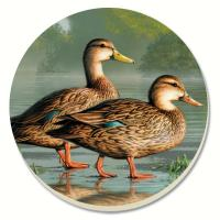 Counter Art Water Birds Brown Duck Coasters Set of 4