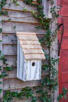 Heartwood Bluebird Bunkhouse Bird House - White