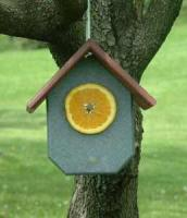 Rubicon Fruit Bird Feeder-Hunter Green