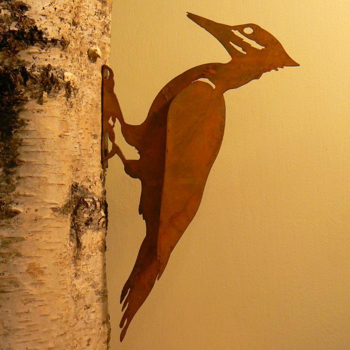 Elegant Garden Design Pileated Woodpecker Bird Silhouette