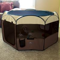 Deluxe Pop-up Playpen Medium