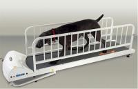 PetRun PR725 Dog Treadmill