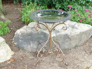 Non-Heated Bird Baths by TDI Brands