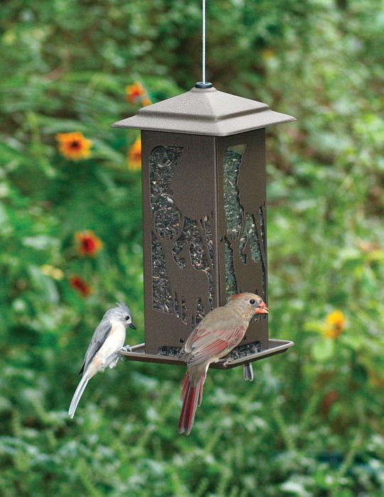 Homestead Wilderness 5 lbs. Capacity Bird Feeder