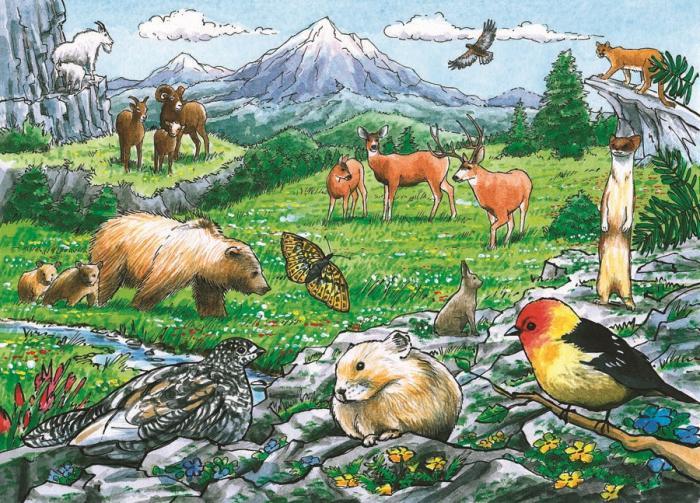 Outset Media Games Rocky Mountain Wildlife Tray Puzzle 35 pcs