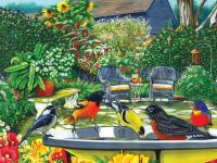 Outset Media Games Bird Bath 500 piece Puzzle