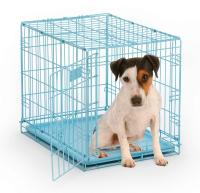 """Mid-West Metal Products iCrate Single Door Dog Crate, Blue - 24"""" x 18"""" x 19"""""""