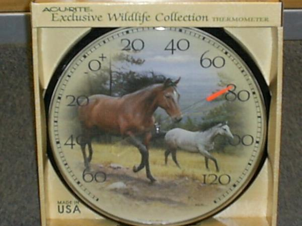 AcuRite Horse Thermometer