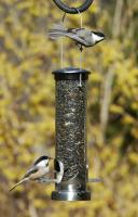 Aspects Brushed Nickel Small Seed Tube Bird Feeder w/ Quick Clean Base