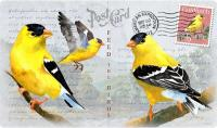 American Expeditions Goldfinch Postcard Cutting Board