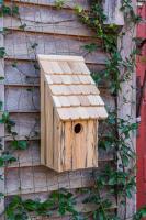 Heartwood Bluebird Bunkhouse Bird House - Natural