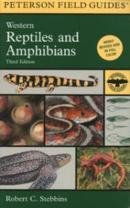 Houghton Mufflin Field Guide To Freshwater Fish