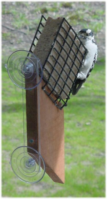 Songbird Essentials Suet Window Bird Feeder